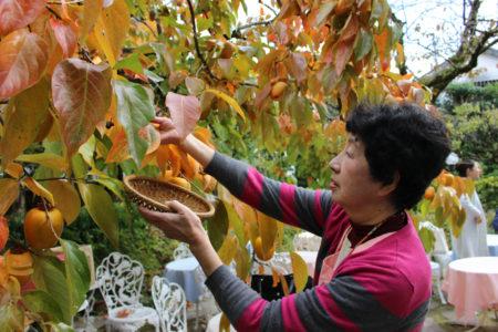 それ以来、栗原さんはお饅頭と一緒に、柿の葉も送っています。