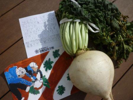 子供のあたまくらいの大きさ! 収穫の様子を描いた画とお手紙付きです。