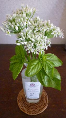 菜の花を少しマイルドにしたような香り。