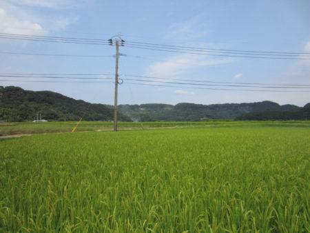 のどかな里山を通って… 九州本土最南端の町、南大隅町へと向かいます。