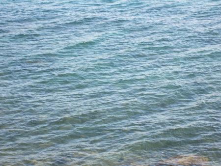 絶望した西郷と月照は、錦江湾に身を投げ
