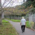 団地のまわりの通学路をおよそ一時間かけて歩きます。