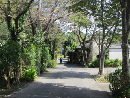一緒に、鹿児島市にある知的障がい者の支援施設・しょうぶ学園を訪ねることになりました。