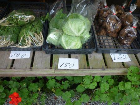今は野菜が少ない時期だからね、あんまりないんだけどね。少しの量でも毎日持って来るようにしてるの
