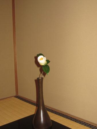 10月のお茶会で…  椿一輪 利休の「花は野にあるやうに…」と良く口にされていました