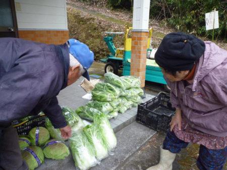 お互いの野菜を見ては、品種をたずねたり