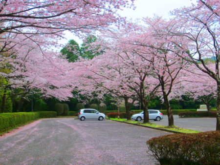 宮崎県都城市にある母智丘(もちお)公園
