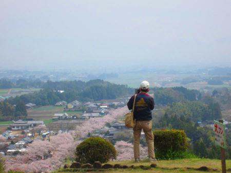 さて、神社の参道から眼下に広がる景色がまた絶景です。