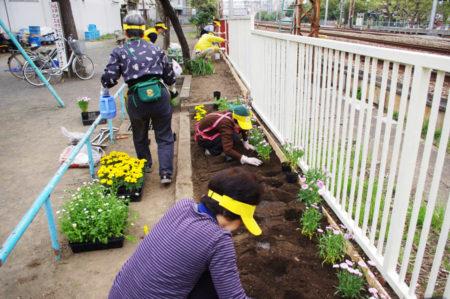 花壇に花を植え…みま~もガーデンが誕生!