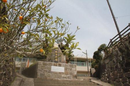 校門には地元名産の金柑の木が