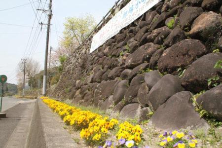 石垣沿いの花壇の色とりどりの花