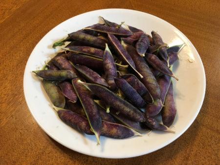 ツタンカーメン豆も、エンドウ豆と同じ