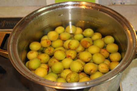 鍋に梅を入れ煮立たせる