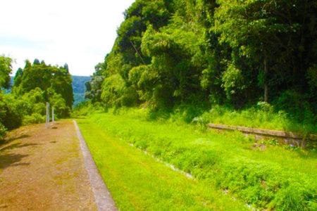 山の向こうまで続く線路のあと
