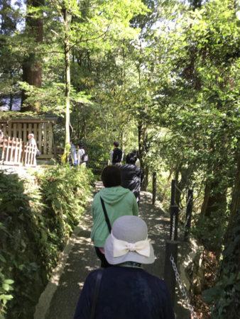 天岩戸(洞窟)は西本宮から谷を挟んで向かい側の中腹に…