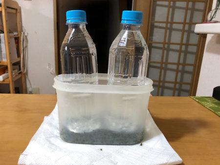 保存容器に入れ、ギューッと押し付けて重しをします (ペットボトルに水を入れて重しにしました)