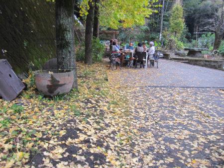 12月上旬には、このあたり一面が黄金色の銀杏の葉カーペットで敷き詰められます