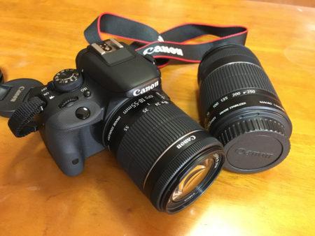 てのんの活動を始め、写真も頑張って撮ろうと、思い切って買った一眼レフカメラ