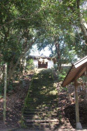 円墳部分の頂上への急な階段