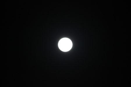 今度は望遠レンズに変えて撮影してみました。