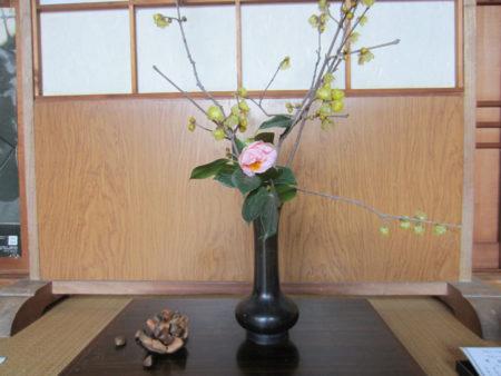 迎えるのは蝋梅と椿の花