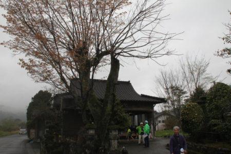 最初に到着したのは、熊本県球磨郡相良村川辺の上園(うえんそん)観音。十七番札所です。