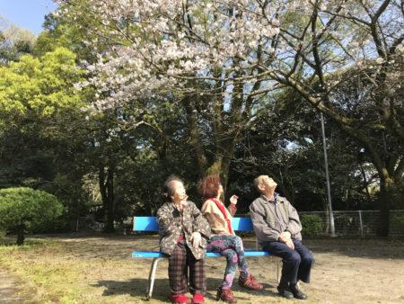 桜の花を見ながら、利子さんがつぶやきました。