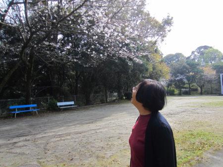 長年、この施設で働いてきた西郷ヨシ子さんが、桜の花を見に来ていました。