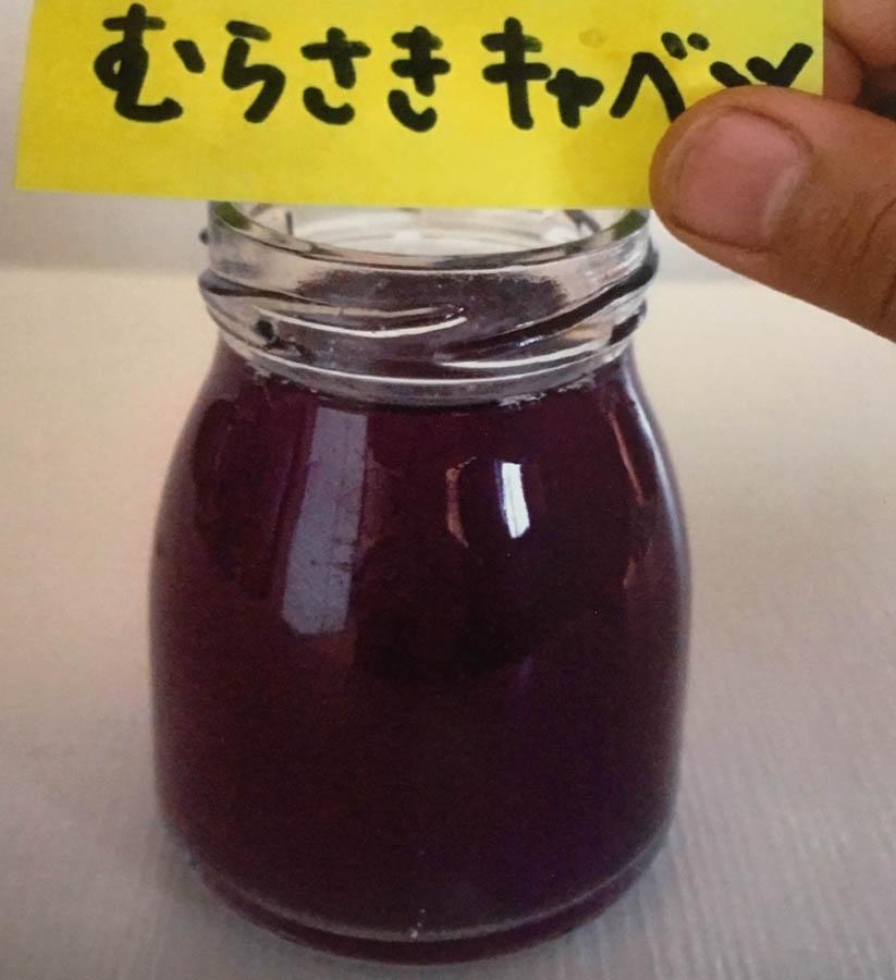 紫キャベツ・・・きれいな紫色のしぼり汁ができた。10種類の中で一番きれいな色水に思った。