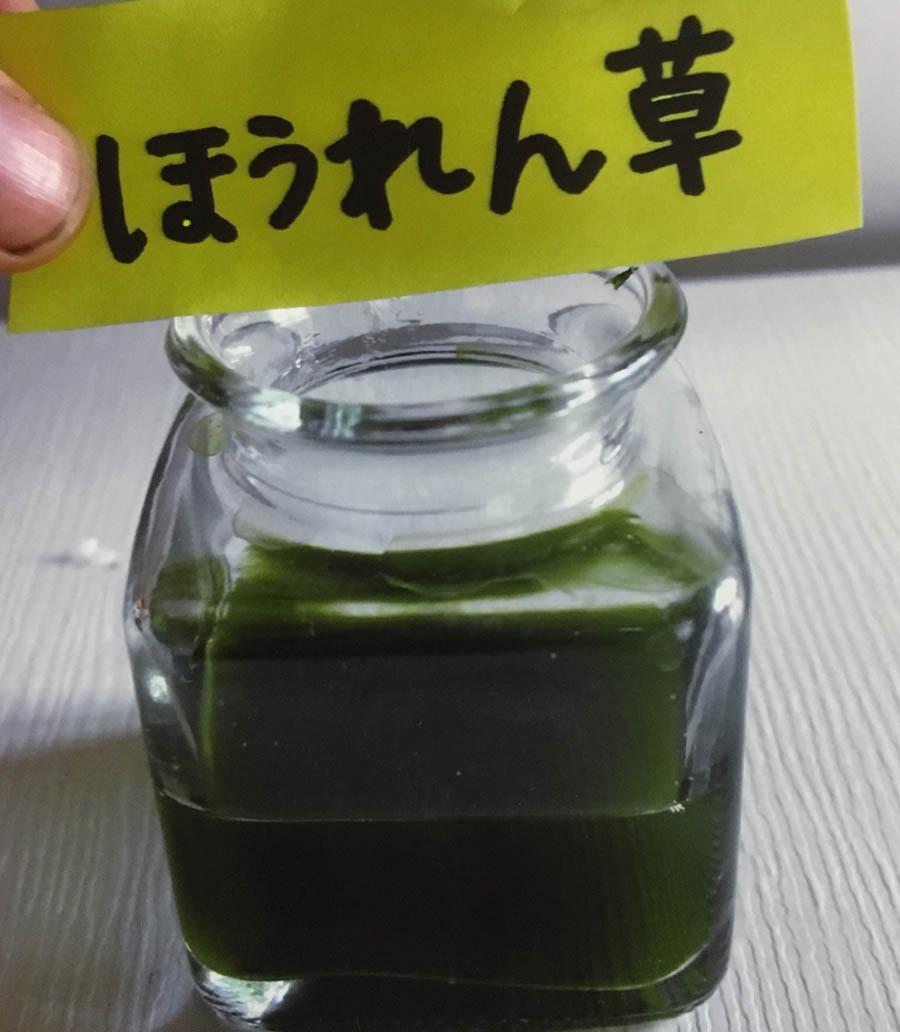 ほうれん草・・葉っぱと同じ、濃い緑色のにごったしぼり汁ができた。