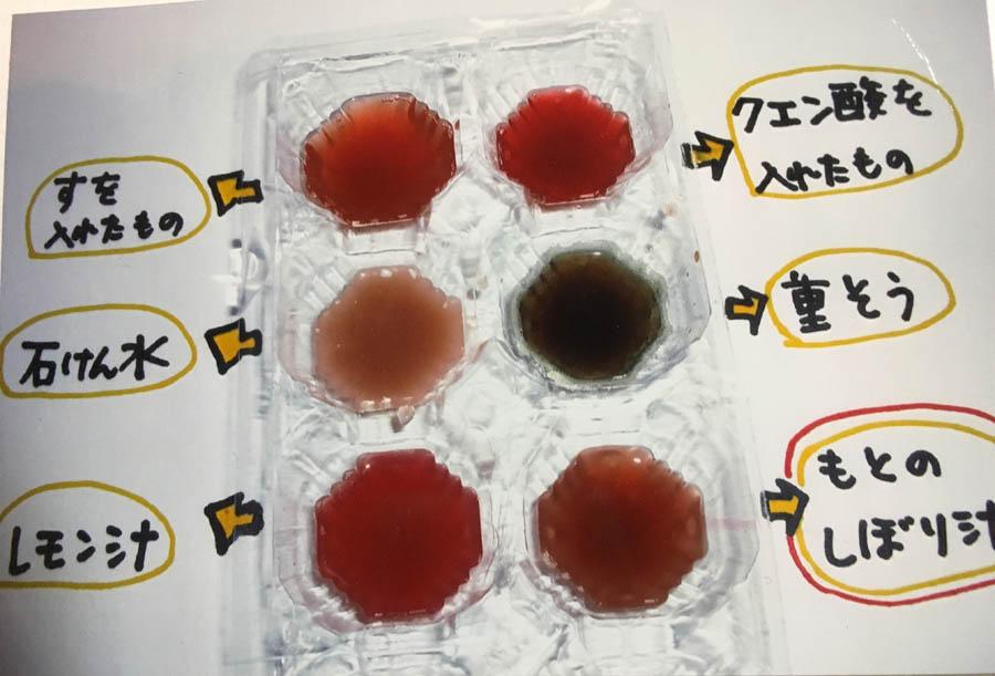 ぶどうの場合・・もとのしぼり汁は赤紫色