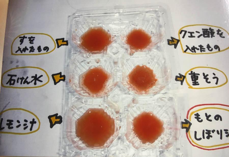 トマト・・もとのしぼり汁はにごった赤色