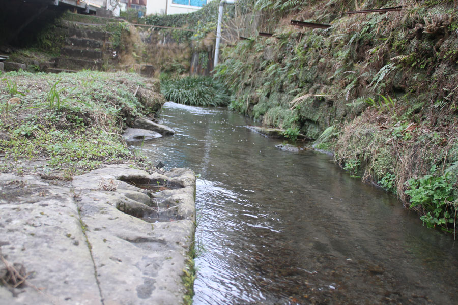 蔵王田の湧水