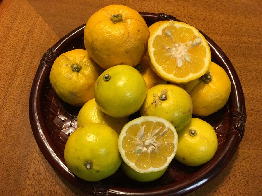 喜界島に他ではみられない柑橘類があることもわかり、これらの在来種が大切な資源としてこれからも残っていってほしいなと思いました。