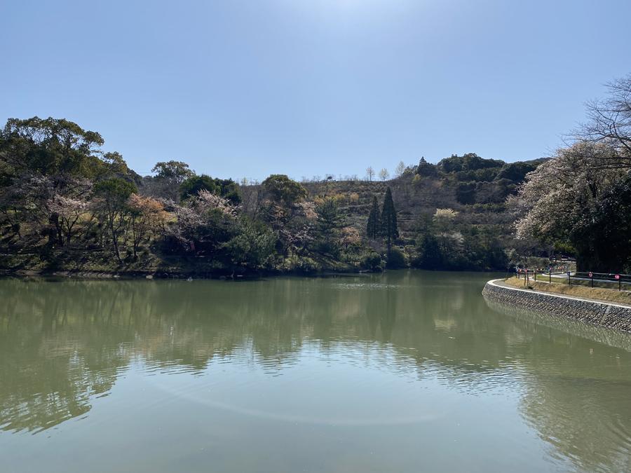 観音ヶ池公園