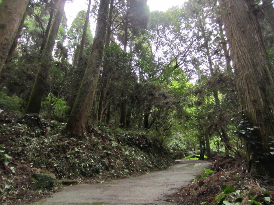 ここがしんこ団子の発祥の地と言われている日吉町吉利にある深固院跡です。