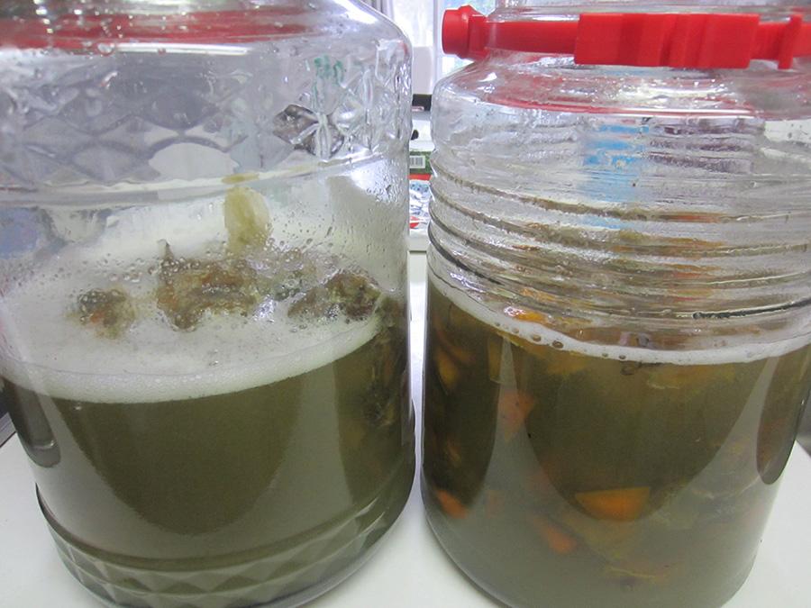 同じようにしていても、右と左では発酵のスピードが違うから不思議