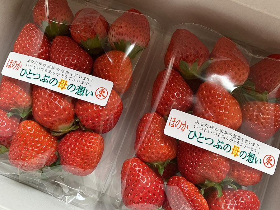 裕子さんの思いのこもったイチゴをいただきました。