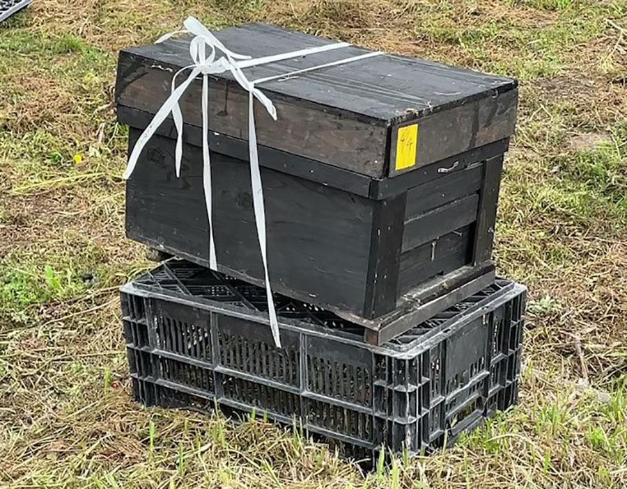 勇気さんが作ったセイヨウミツバチの巣箱