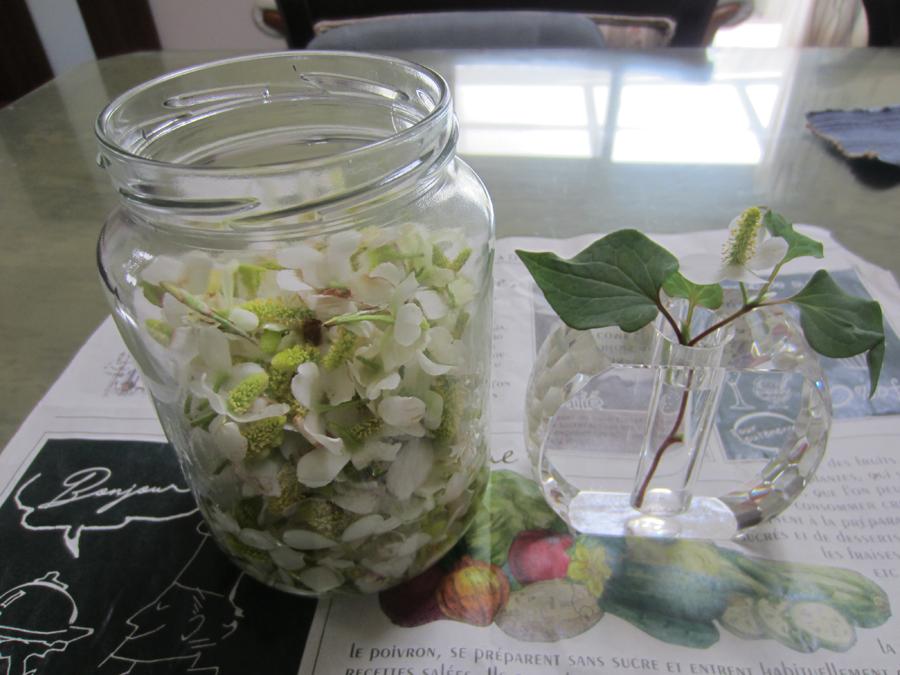 ガラス瓶にドクダミの花を入れました