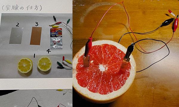 夏休みを前に・・小学生の自由研究のヒント~フルーツ電池・液体電池の実験~前編