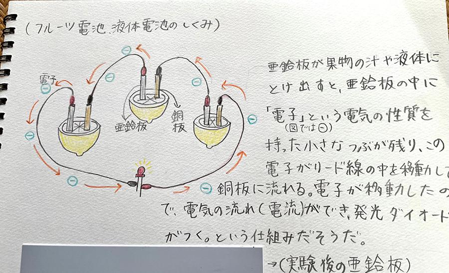 フルーツ電池・液体電池の仕組み