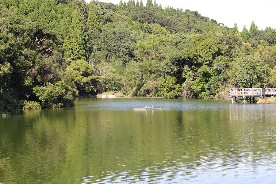 爆弾が多数落とされた天神池付近